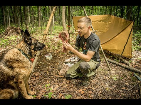 Overnight Bushcraft Camp with my Dog - Tomahawk Steak over t