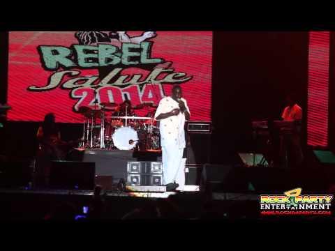 Leroy Sibbles   Rebel Salute 2014