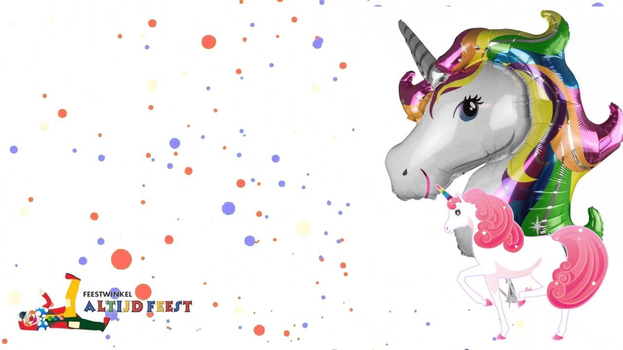 Eenhoorn Feestartikelen Verjaardag Feestwinkel Altijd Feest Youtube