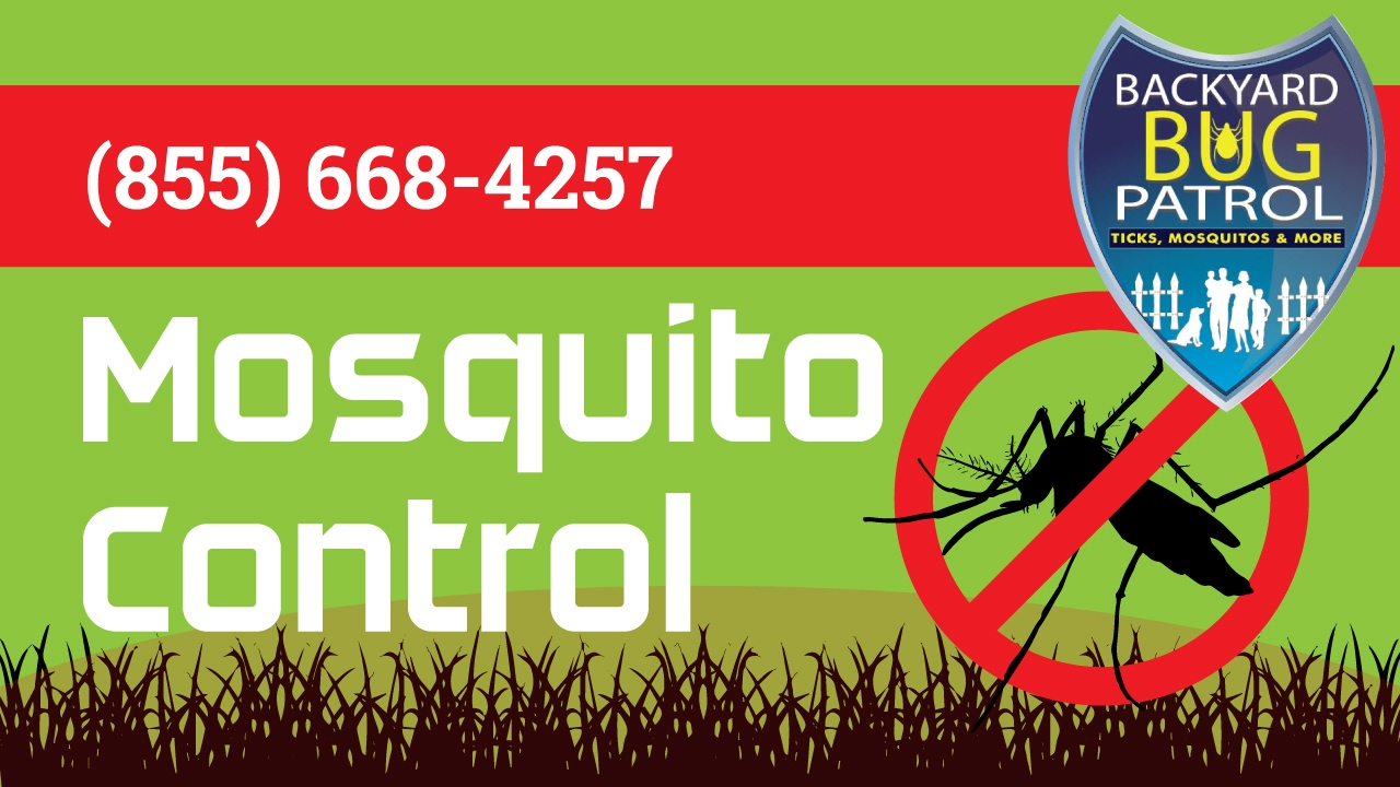 mosquito control south riding va backyard bug patrol youtube