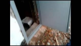 видео Однопольные противопожарные двери