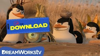 Penguins of Madagascar Top 5 Mission Moments | THE DREAMWORKS DOWNLOAD