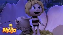 🌷🌕🌷Die Klatschmohnwiese bei Nacht - Die Biene Maja 🌷🌕🌷