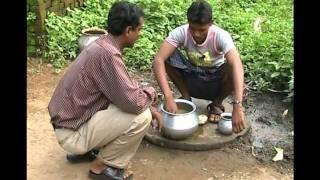 Organic formulation for controlling leaf curl diseases in plant Oriya Pragati Odisha