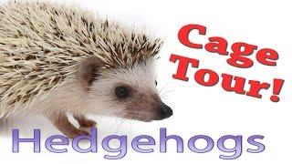 Hedgehog Cage Tour