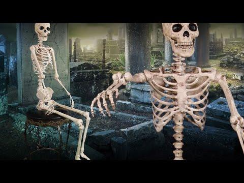 Lifesize Poseable Skeleton Halloween Decoration