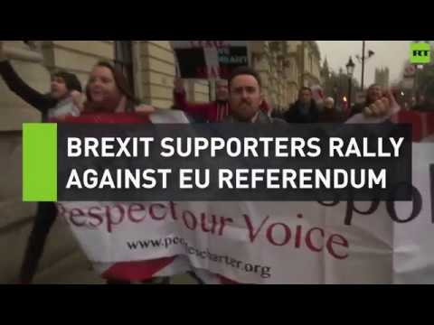 Brexit supporters rally against EU referendum
