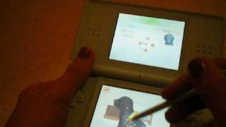 nintendogs cheats! how to get a TON of trainer points!