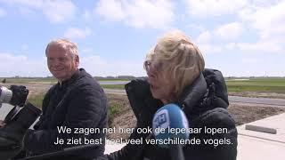 Jouw Noord-Holland - Op Texel is het grootste weidevogelgebied van Nederland in oude staat hersteld