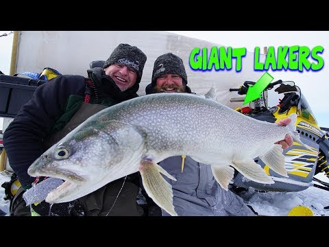Ice Fishing for GIANT Lake Trout!!!