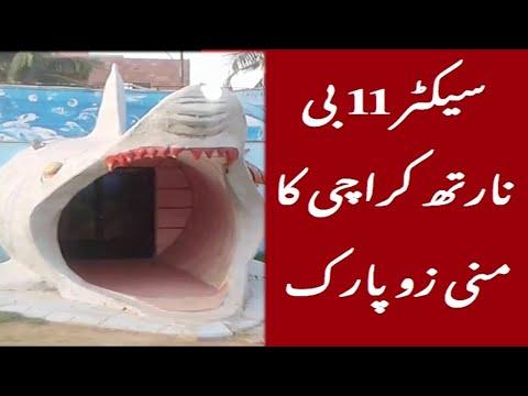 Moin akhtar mine zoo park sector  11 B North Karachi