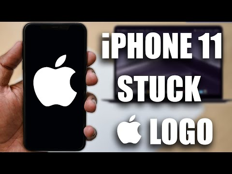 fix-iphone-11/11-pro/11-pro-max-stuck-on-apple-logo-or-boot-loop---resolve-ios-13/14-endless-reboot