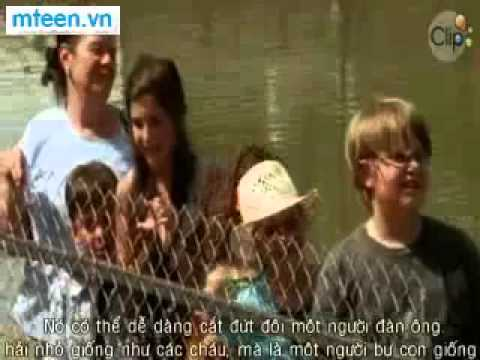 Ca Map Dam Lay tap 1