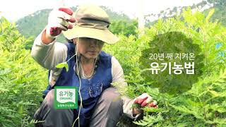 화순불미나리(주) 20년 유기농땅