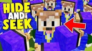 DER EPICSTUN TROLL | Minecraft Hide and Seek