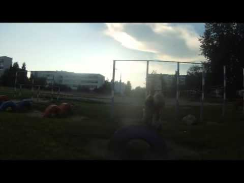 One Good day (Trained Parkour)