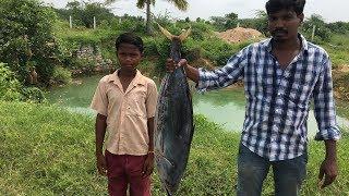 Big Fish Biryani Cooking A Big Tuna in My Village Cooking Tasty Fish Biryani for 100 villagers