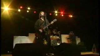 38 Special Live @ Sturgis - If I