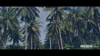 Đàn Bầu: DÁNG ĐỨNG BẾN TRE - Độc tấu Tranh Sáo Bầu Hay Nhất ★ Độc Tấu Đàn Bầu Hay Nhất