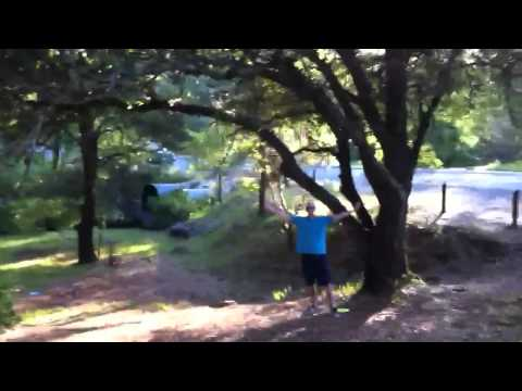 Disc golf birdie + fist pump