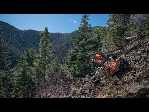 HUNTING BIG BULL ELK IN COLORADO WITH MTN OPS