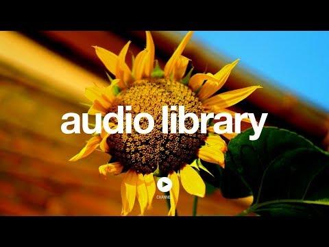 Sunflower - Topher Mohr and Alex Elena (No Copyright Music)