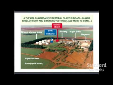Dario Gaeta    Ethanol in Brazil A model to follow or to avoid