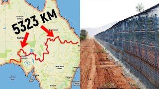 Зачем австралийцы построили самый длинный забор в мире?!