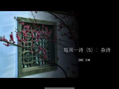 【唐】王维:杂诗