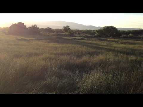 Balloon adventure over Albuquerque swampland #7