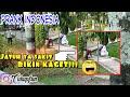 Nelpon Konyol Ga Jelas Sampai Jatuh Jatuh - PART I - PRANK INDONESIA
