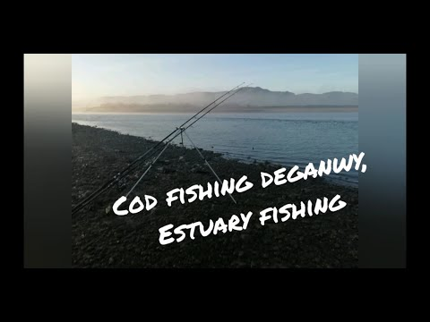 Shore Fishing - Cod Fishing In Deganwy On The Conwy Estuary