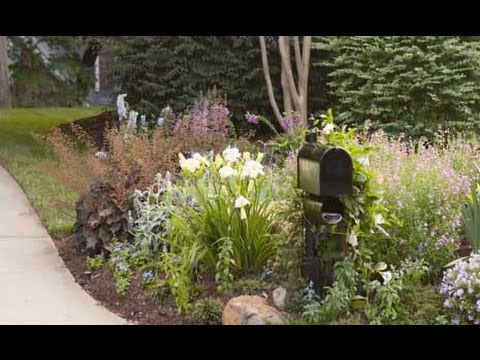 Curb Appeal: Front Yard Landscaping Ideas