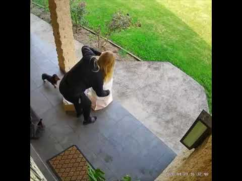To Prank Her Dog But She Faceplants For Real