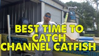 Best Time To Catch Channel Catfish - Learn To Catch Catfish Catfishing Quick Tip
