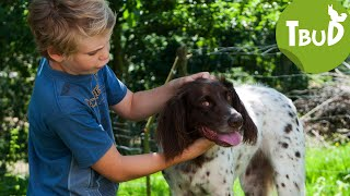 Halbwild (Folge 91) | Tiere bis unters Dach | SWR Kindernetz