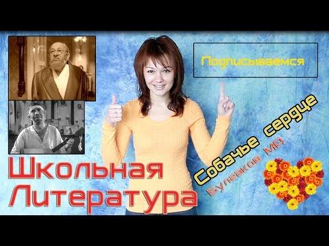 Собачье сердце, Булгаков М.А. Краткий пересказ, краткое содержание.