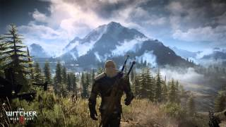 "The Witcher 3: Wild Hunt OST ""The Fields of Ard Skellig"""