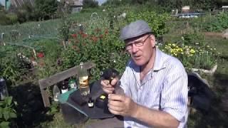 Как избавится от жуков на картошке