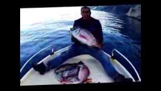 Repeat youtube video Fishing Line (Παραγάδια Κύμη Μάκης-Σάκης Νο.5)