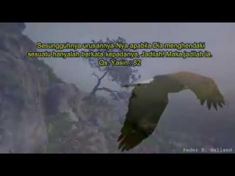 Qs Yasin Ayat 82 Penggalan Ayat