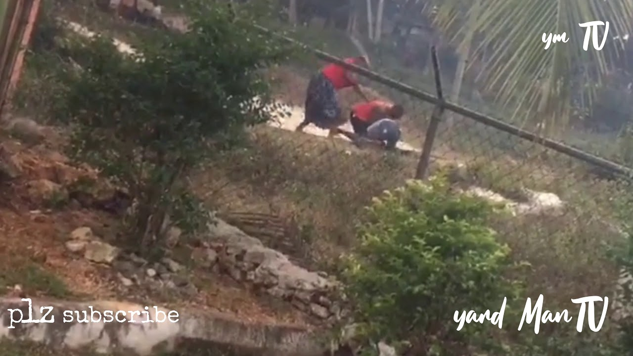 Download Woman beat man in Jamaica (fight)