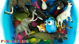 Learn Wild Animals Names For Kids with Fun Box of Toys Full of Animal Toys To Learn Colors