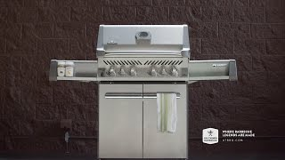 Napoleon Grills P500RSIB Gas and Charcoal Grill - Overview