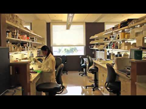 A tour of the UofL Genomics Core Facilities