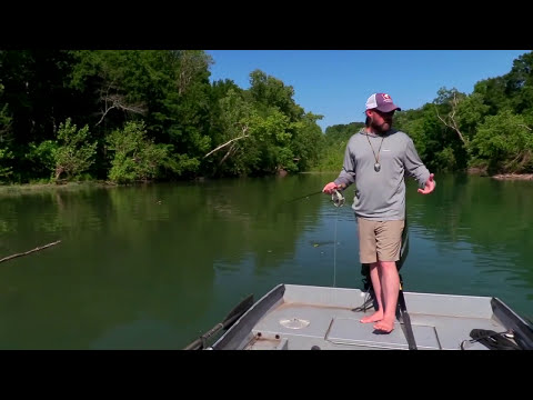 River System Muskie Fishing on Fly with...