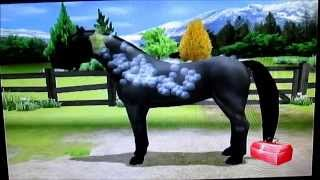 Pony Friends 2 Wii- Il mio nuovo cavallo Royce! [Gameplay]