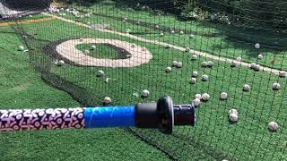 Demarini Wizardry: CF-XD Fastpitch Adjustable Length Review
