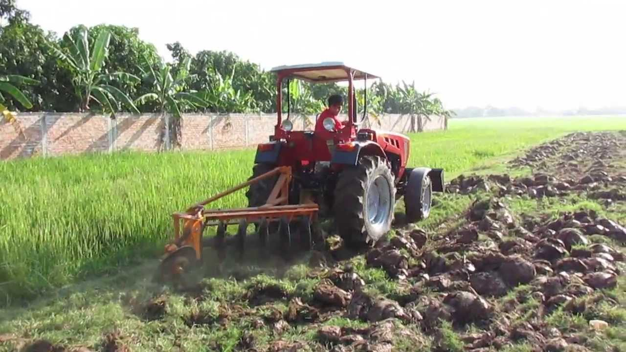 Ploughing Tractor Belarus 421 On Paddy Fields In Cambodia