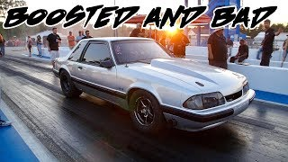 THIS MUSTANG IS BOOSTED AND STRAIGHT BAD!! MEAN MACHINE!